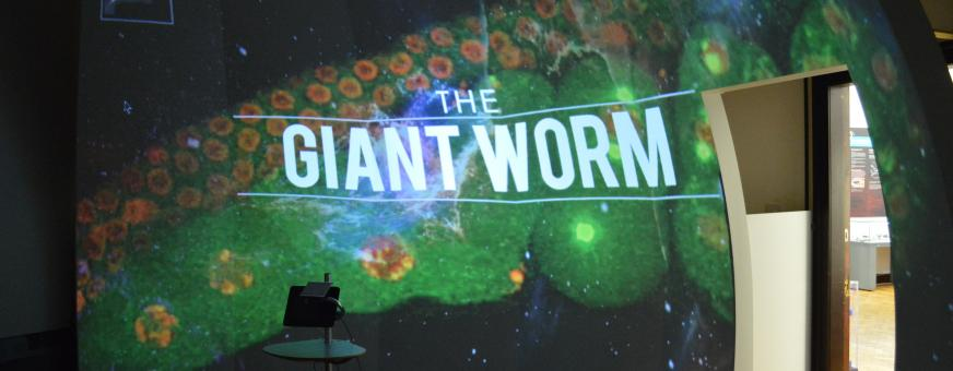 The Interactive Screen at the Mills with the Giant Worm image
