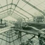 Glasshouse pond (1975)