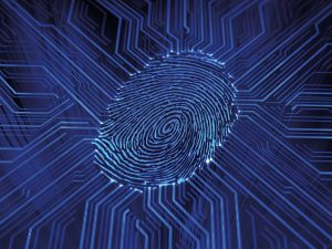 Digital Fingerprint CSD Leaflet image