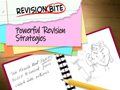 Powerful Revision Strategies