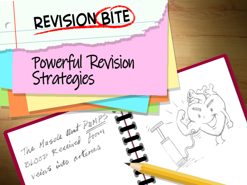 Revision Bites - Powerful Revision Strategies