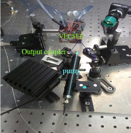 PHOQUS - esr1-figure1b